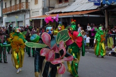 Carnaval Guyane à Cayenne